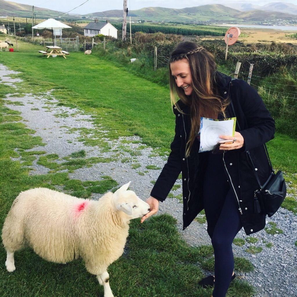 girl-feeding-sheep-ireland