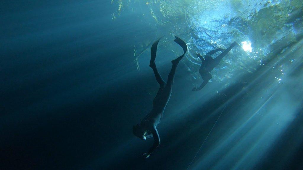 freedivers cenote maravillla puerto morelos mexico