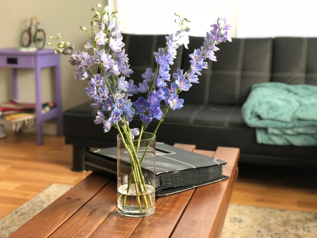 purple flowers on coffee table in home