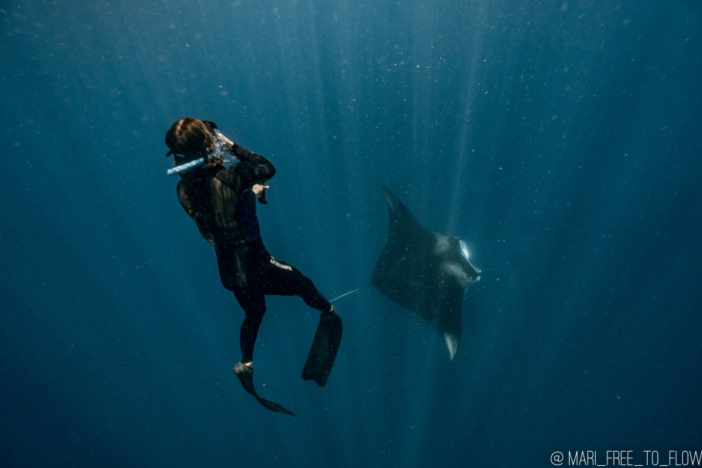 swimming with manta rays in cancun mexico