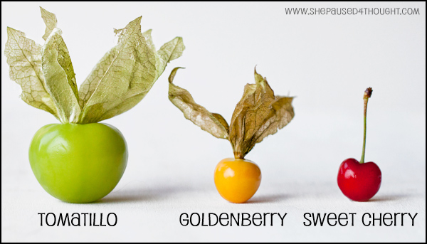 comparison Tomatillo Goldenberry Sweet Cherry