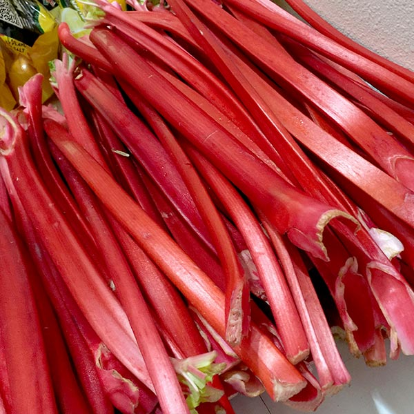 rhubarb from Melissa's Produce
