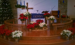 Church decorated for Christmas.293x175