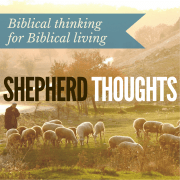 SHEPHERD THOUGHTS (5)