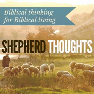 SHEPHERDTHOUGHTS (5)