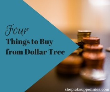 Four Things To Buy from Dollar Tree
