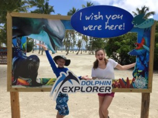 Swimming with Dolphins in Dominican Republic Dolphin Explorer