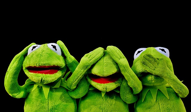 Tidying up using the Kondo method may have people struggling a bit like Kermit the Frog here, but applying the principles shared by Marie Kondo in her book and series can mean organized bliss.