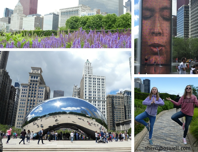 Millennium Park, the Bean, Lurie Garden, and the Crown Fountain in Chicago.