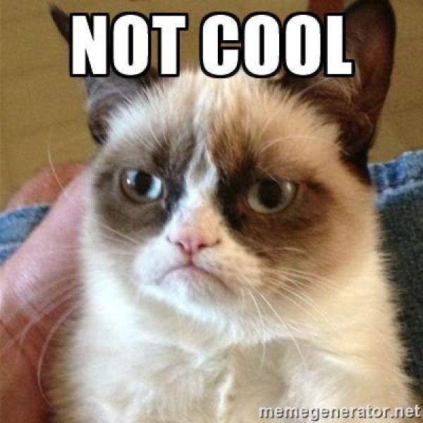 grumpy-cat-not-cool
