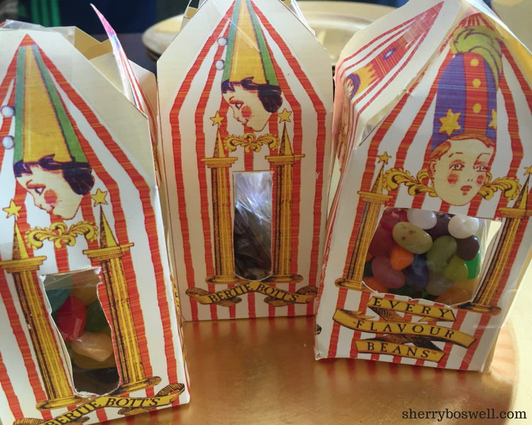 Bertie Botts Harry Potter party (1)