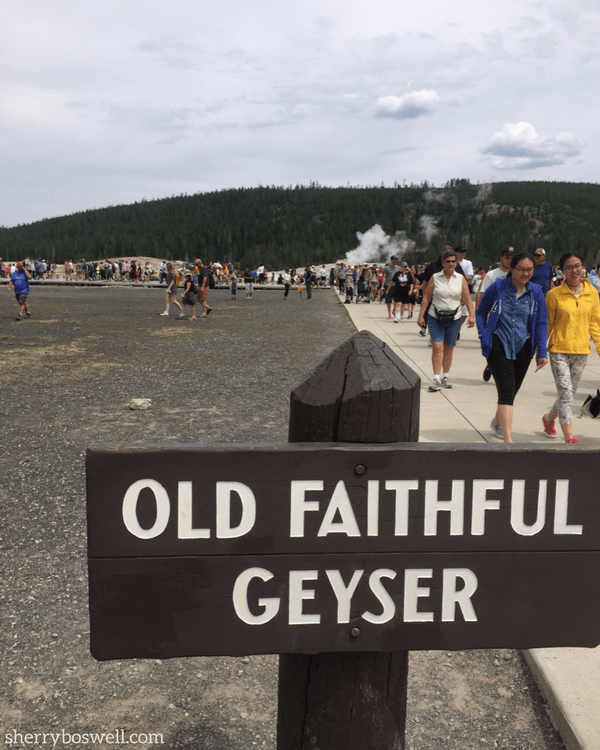 Old Faithful draws quite a crowd, so come prepared to share the geyser with others on your Yellowstone vacation.