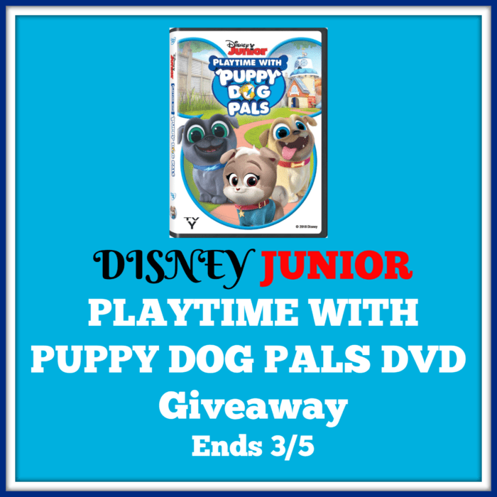 Disney Junior Playtime with Puppy Dog Pals