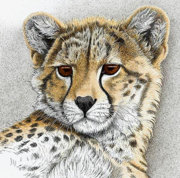 Sherry Steele Artwork - Born to Charm   Cheetah