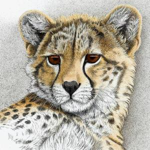 Sherry Steele Artwork - Born to Charm | Cheetah
