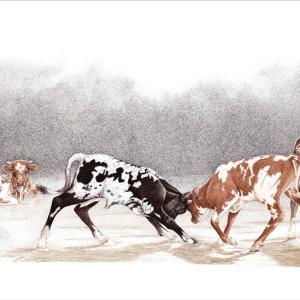 Sherry Steele Artwork - Legends in Training   Longhorns