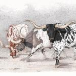 Legends of the West | Longhorns