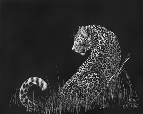 Moonlight Moment | Leopard