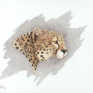 Sherry Steele Artwork - Serengeti Sweetheart | Cheetah
