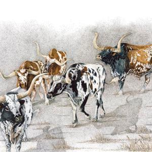 Sherry Steele Artwork - Some Can, Some Can't | Longhorns