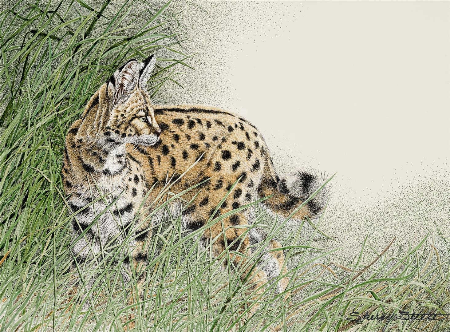 Sherry Steele Artwork - Tuned In - Serval - Big Cats