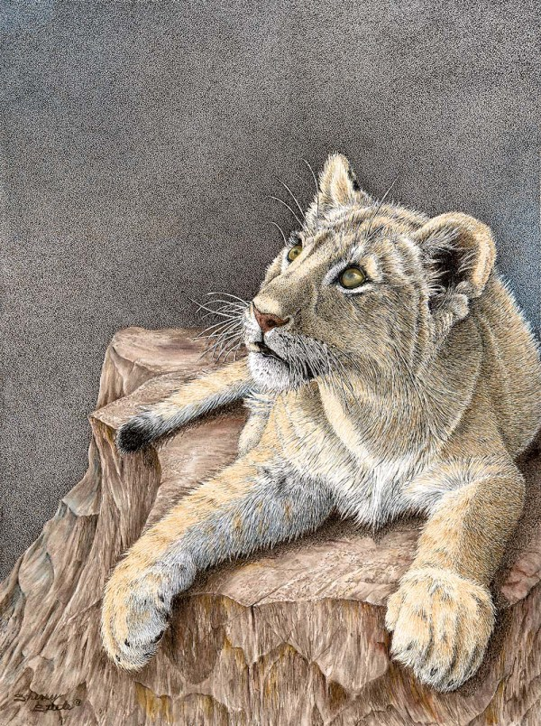 Destiny's Child Lion Cub by Pen & Ink Artist Sherry Steele