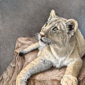 Destiny's Child Lion Cub by Pen & Ink Artist Sherry Steele
