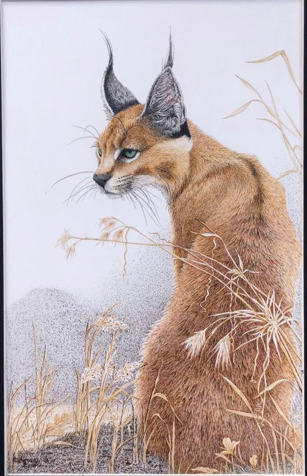 I Heard That - African Wildlife Big Cat by Artist Sherry Steele