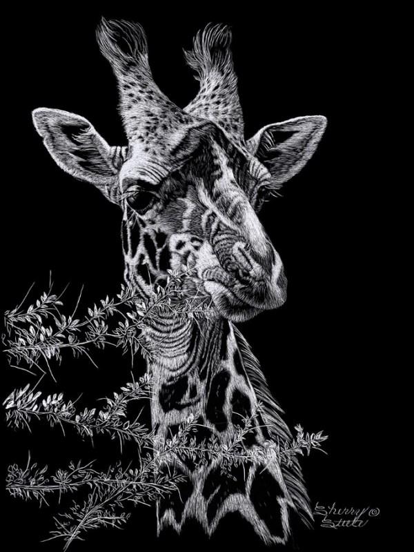 Just Checking Giraffe artwork by Sherry Steele