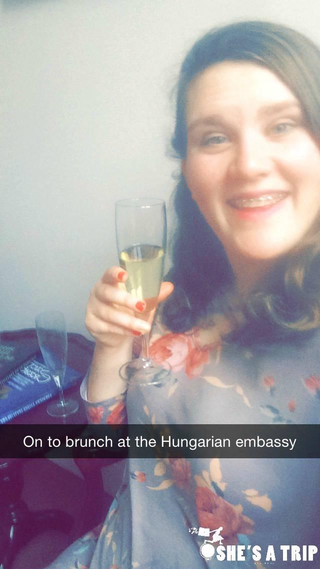 Hungarian Embassy Washington