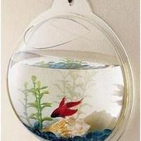 Wall Mount Beta Fish Bubble Aquarium Tank For $17 Shipped