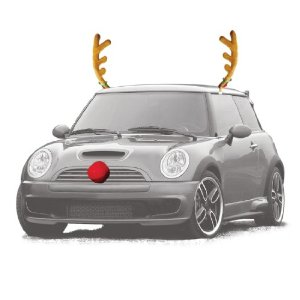Reindeer Auto Outfit