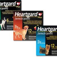 Heartgard Plus Rebate | $12 Back WYB 12 Doses
