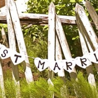 Just Married Banner For $6.99