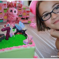 Fairy Horse Themed Birthday Party