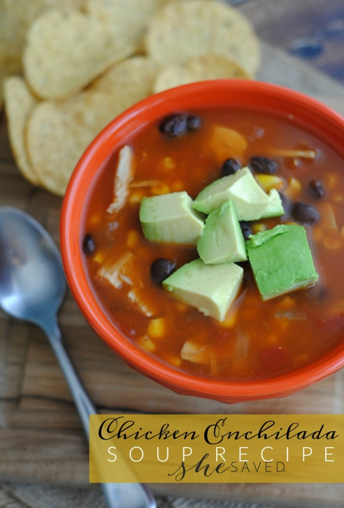 If you are looking for a delicious and simple meal idea, my easy Chicken Enchilada Soup recipe is perfect! A wonderful comfort food that is easy on the budget and will be a family favorite!