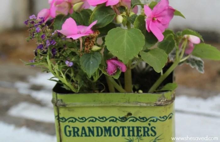Use these top tin planter tips for making unique garden decor!