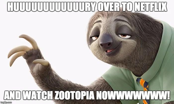 zootopia-sloth