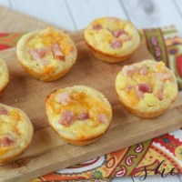 Ham and Cheese Bites Recipe