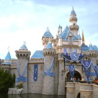 FREE Disney Parks Planning DVD