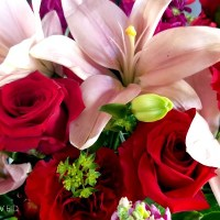 Send a LOVE with Teleflora's Valentine's Day Bouquets + Giveaway #LoveOutLoud
