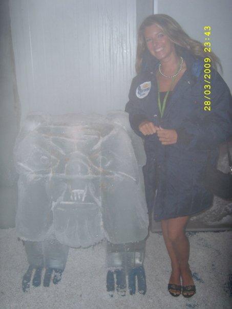 < Bulldog Ice Bar >