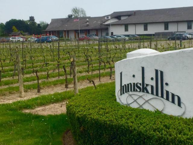 < Inniskillin Winery >