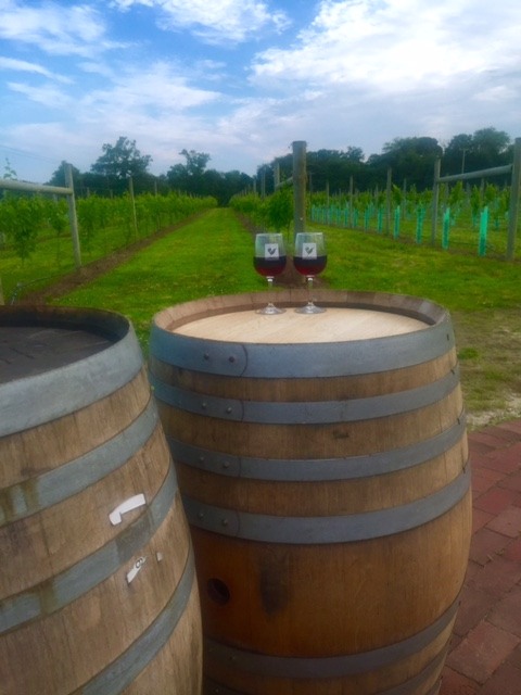 < Fun things to do at the Jersey Shore: wineries >