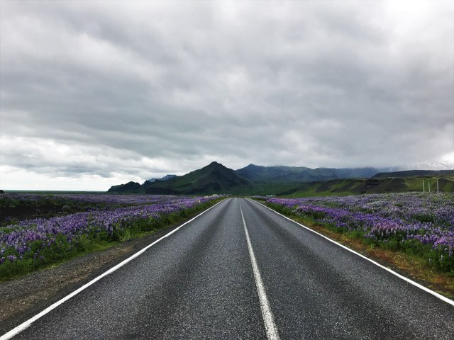 Not only is the Ring Road easily accessible and light all day every day in summer, it's a beautiful drive!