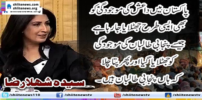 "Deputy Speaker of Sindh Assembly ""Punjabi Taliban are another name for Daish"""