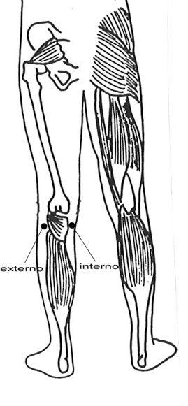 dolor-lumbar-miogelosis-sotai