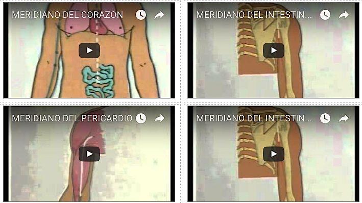 Meridianos Acupuntura Videos