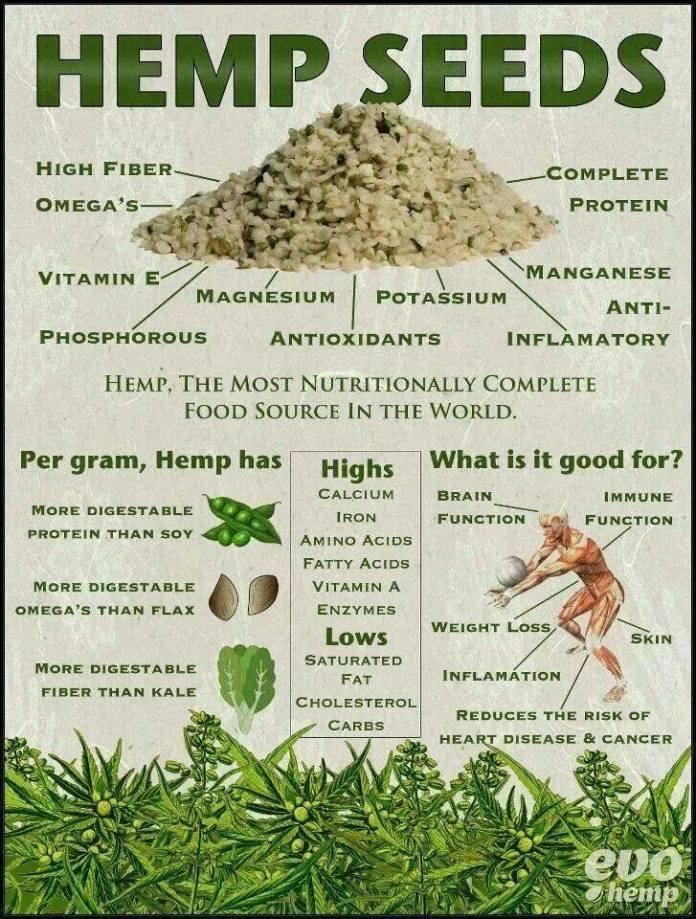 benefits of hemp