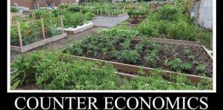 counter economics